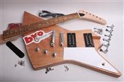 Electric Guitar Kit - Exp BYO-EXP